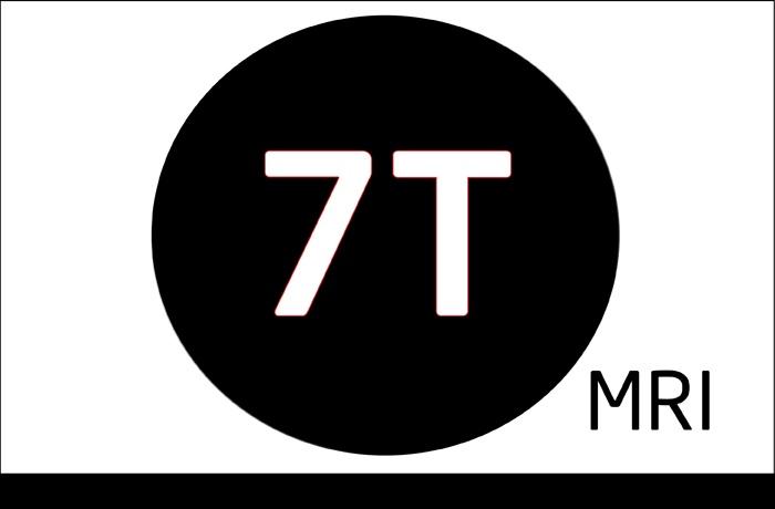 7T MRI.jpg