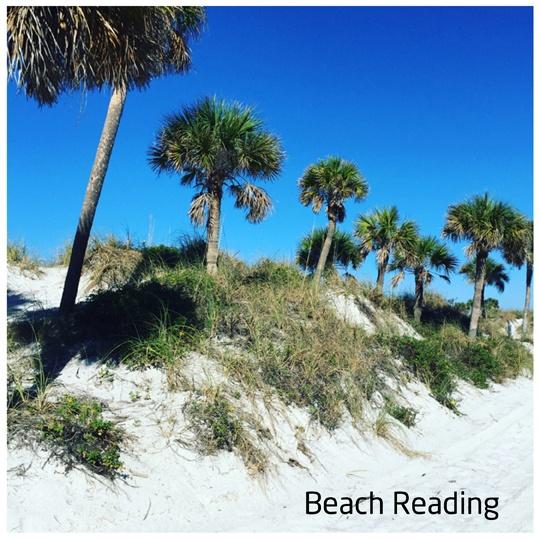 C-Arm Beach reading.jpg